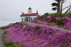 Battery-Point-Lighthouse_Crescent-City